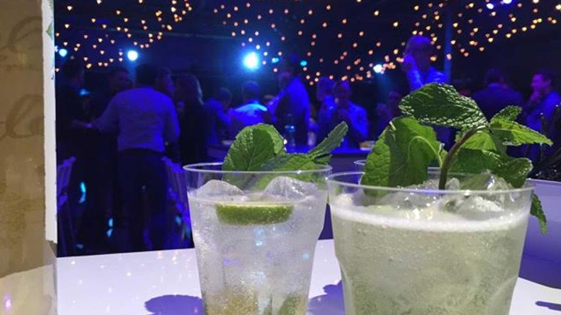 Ik wil Gin Tonics bij mijn event